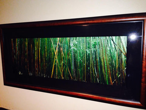 "Peter Lik (Australian, b. 1959), ""Bamboo"", halide Fuji crystal archive print, signed and numbered 555/950"