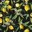 Black Lemon Tree Garden Multicolored Wallpaper Reusable Removable Accent Wall Interior Art (wal049)
