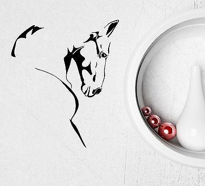 Vinyl Decal Wall Sticker Horse Head Sketch Stallion Mustang Beautiful Animals Modern Home Art (ig2043)