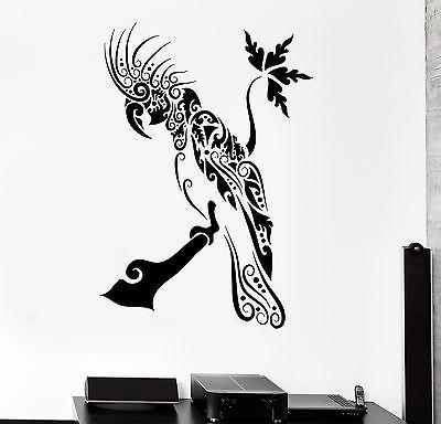 Wall Decal Bird Parrot Cool Ornament Mural Vinyl Decal Unique Gift (z3327)