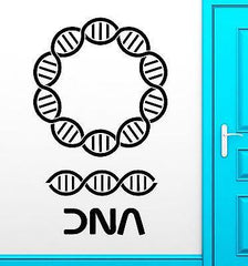 DNA Wall Stickers Genealogy Biology Chemistry School Science Vinyl Decal ig2425