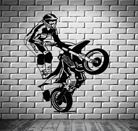 Motorcycle Vinyl Decal Race Extreme Sports Freestyle Wall Stickers (ig2322)