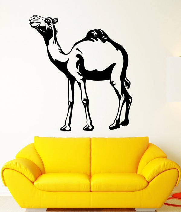 Vinyl Decal Africa Camel Zoo Wall Stickers Desert Animals Decor Unique Gift (ig2362)