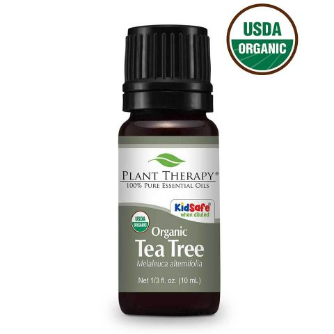 Plant Therapy Tea Tree Organic Essential Oil 10mL