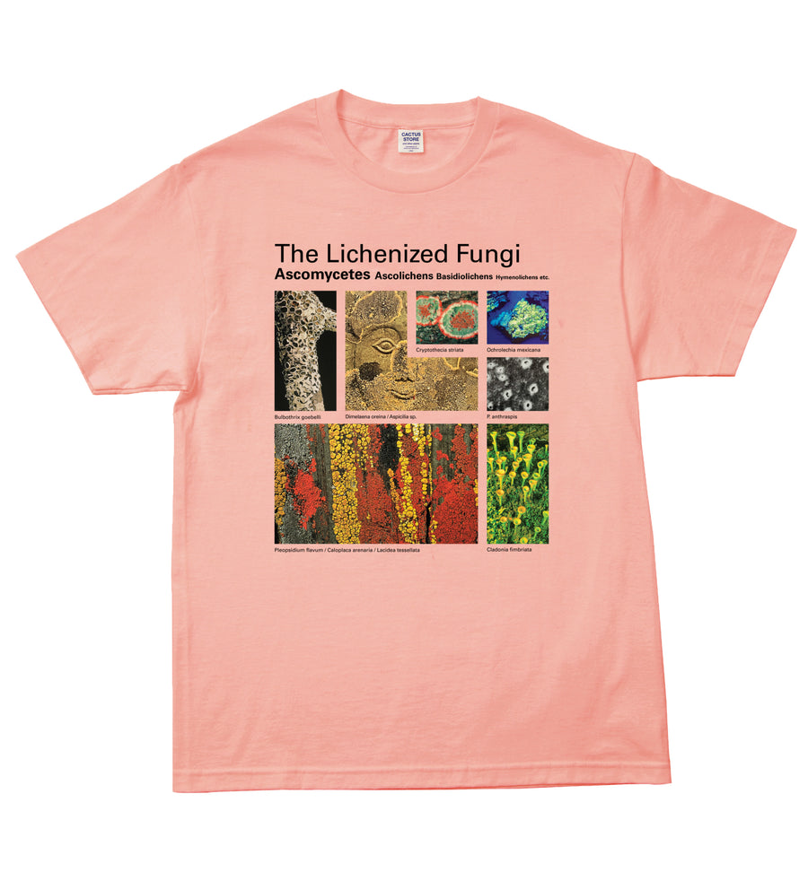 Taxa Shirt 3: The Lichens