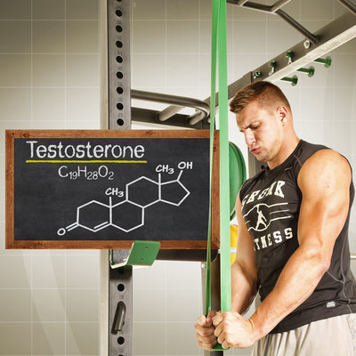 6 Tips To Boost Your Testosterone Naturally