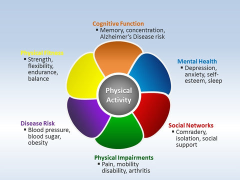 Exercise and fitness positively impacts veterans infographic