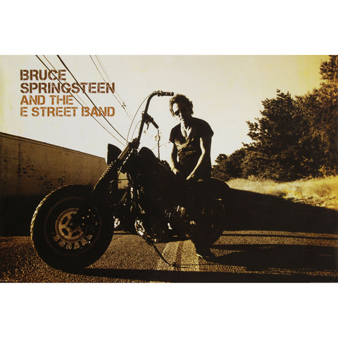 Bruce Springsteen Domestic Poster