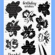 SS Daffodils dream stamp and die set