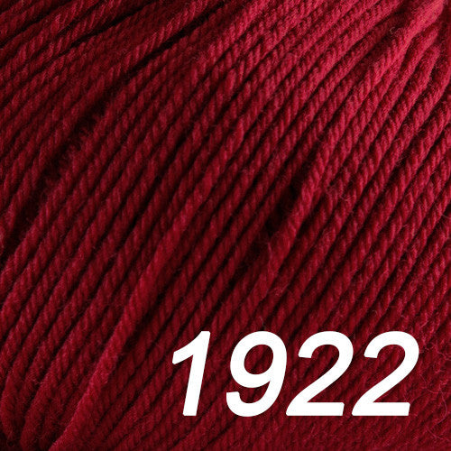 Cascade Yarns - 220 Superwash Yarn - 1922