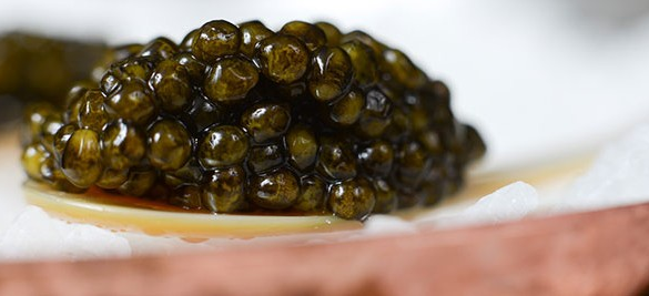 Stop Eating Caviar Now!