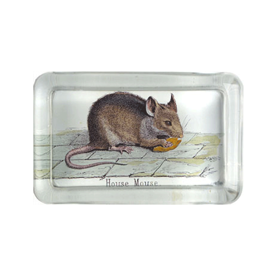 "House Mouse Rectangle Paperweight - 2.75 x 4.25"" Rectangle"