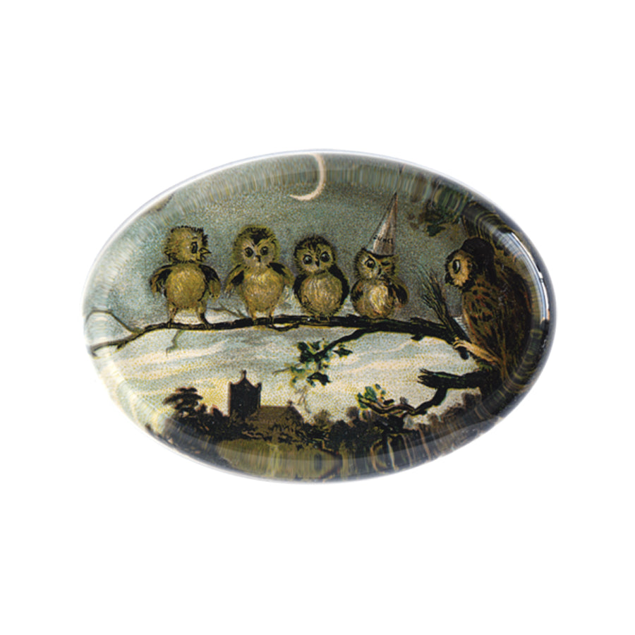 Night Class (Owls) Oval Paperweight