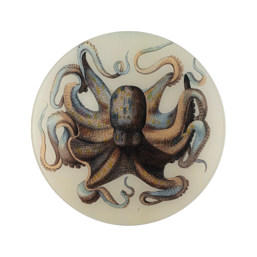 Octopus Plate