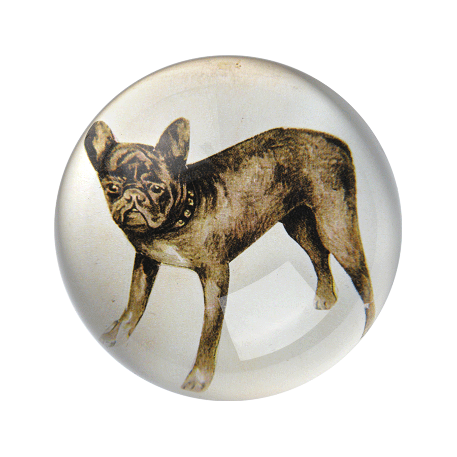 "French Bulldog Dome Paperweight - 1.5"" h x 3.5"" d paperweight"