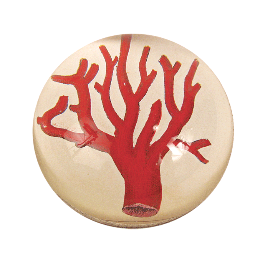 John Derian Red Coral Dome Paperweight