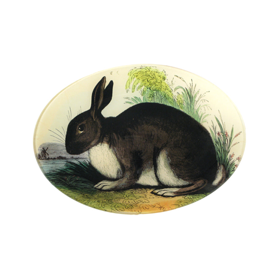 Rabbit Oval Plate