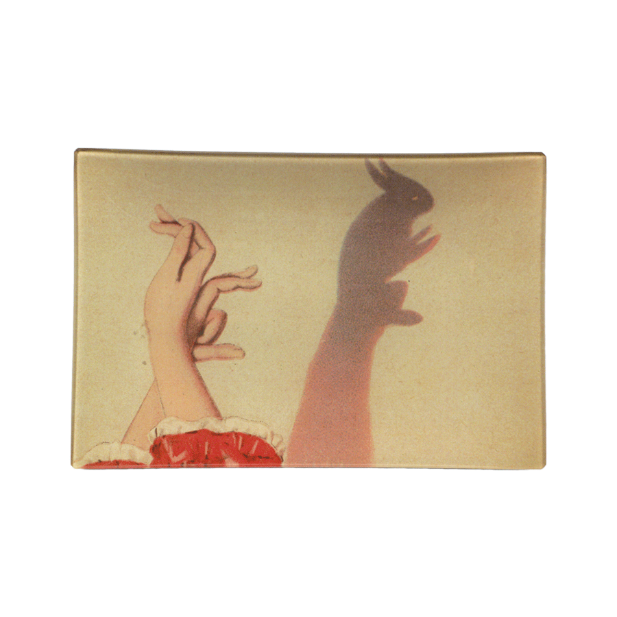 John Derian Shadow Puppet Tray