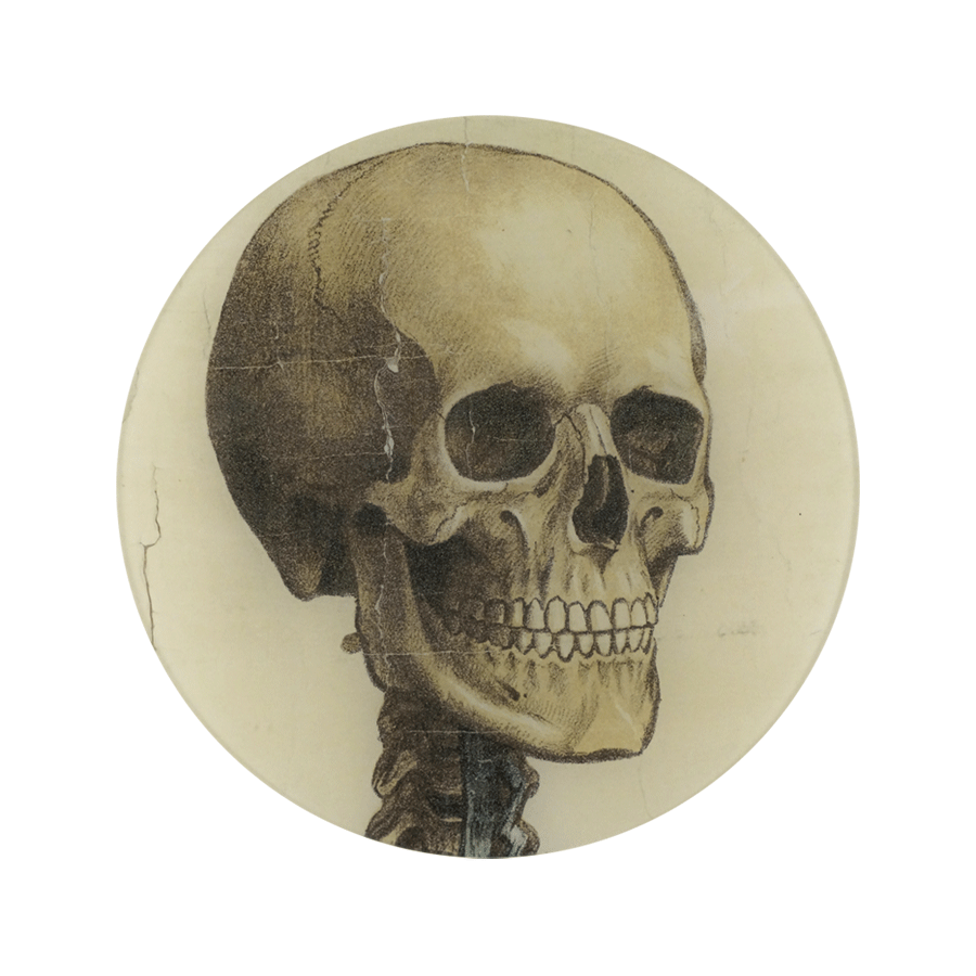 Skull Facing Right Plate