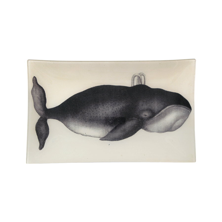"Whale Tray - 10 x 16"" Rectangle"