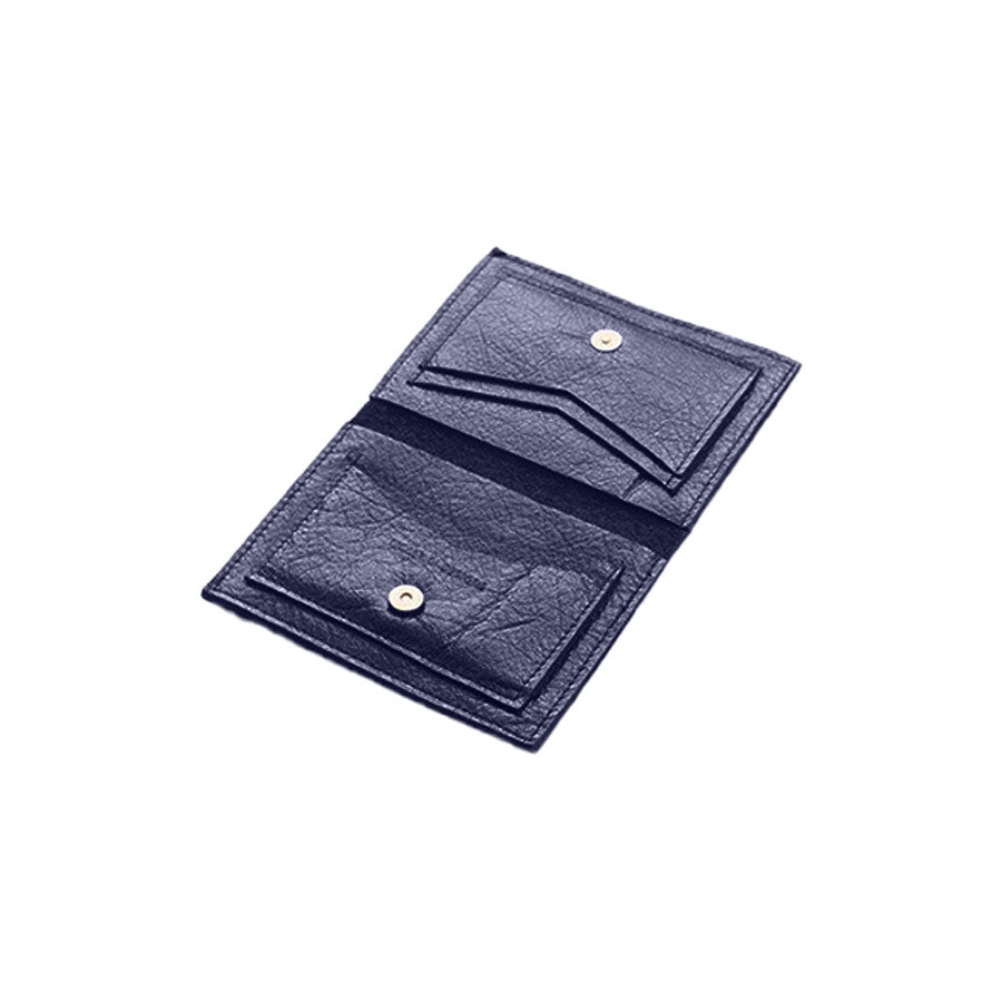 Molly M Cash & Credit Card Wallet | Sapphire
