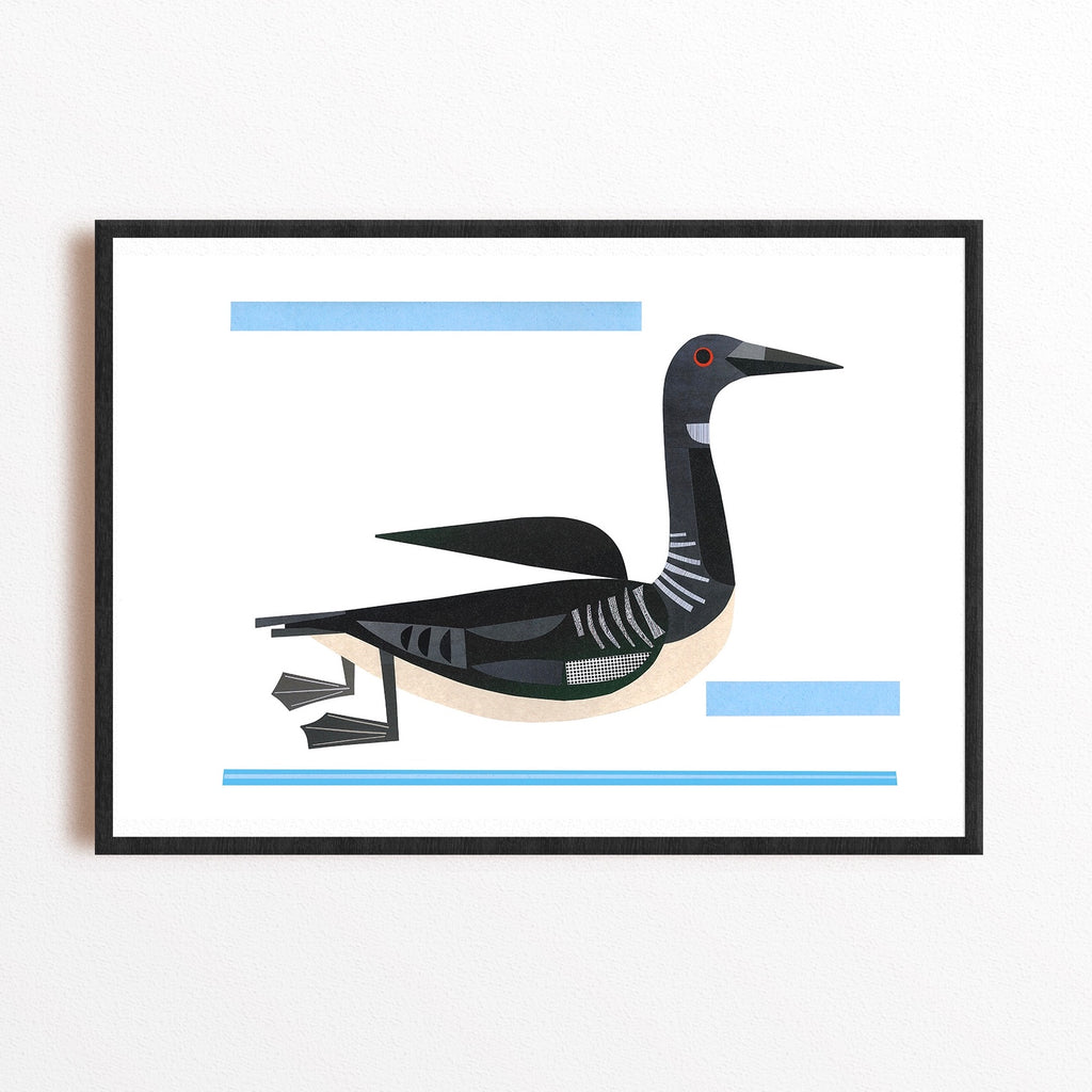 Zebuu Canadian Loon Art Print
