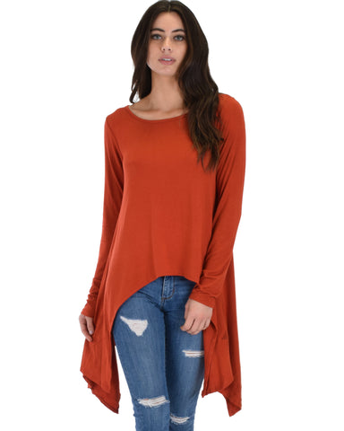 Shift and Swing Long Sleeve Rust Tunic Top