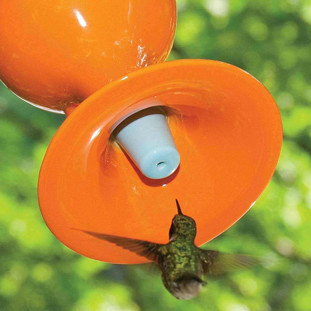 J Schatz Hummingbird Feeder