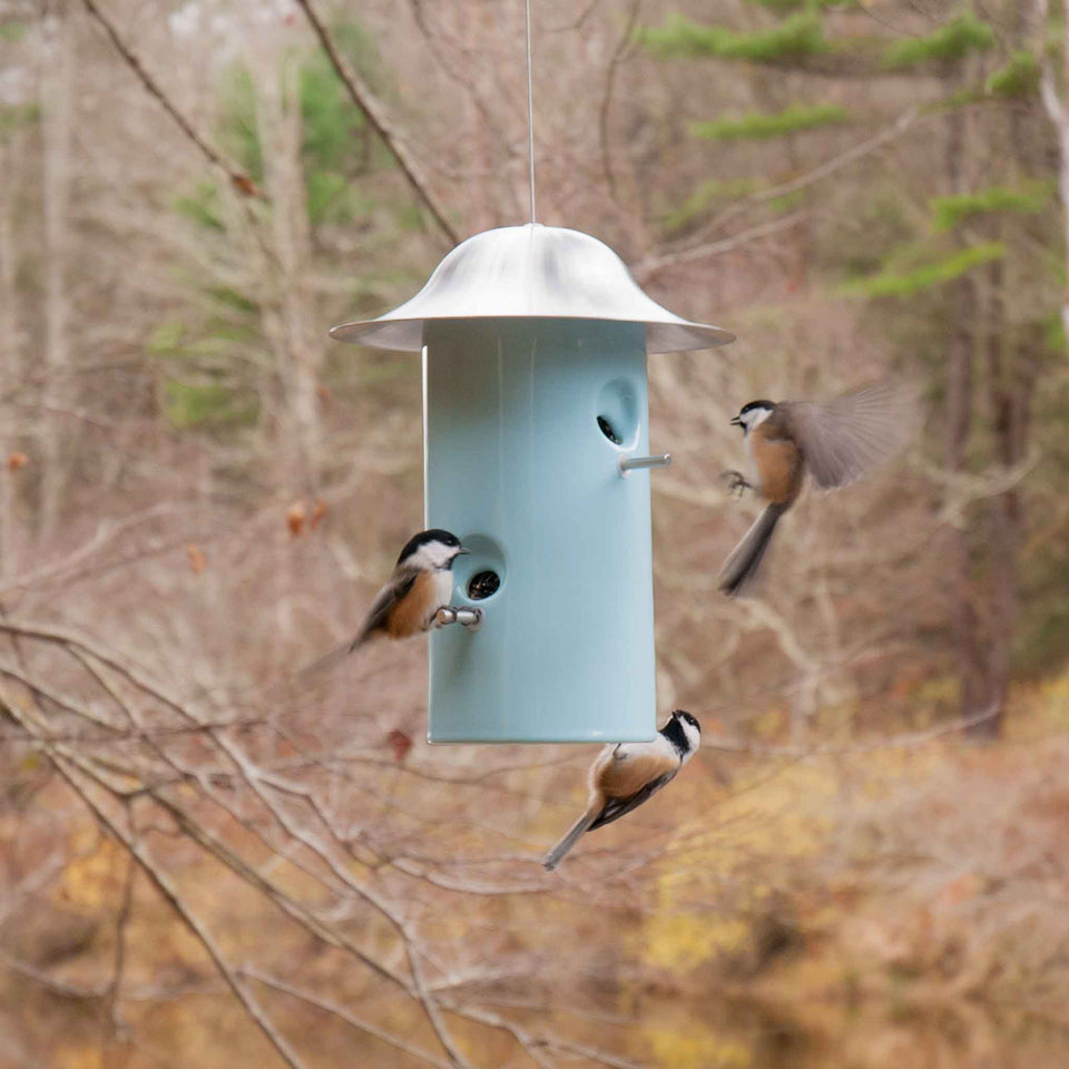J Schatz Light Aqua Bistro Bird Feeder