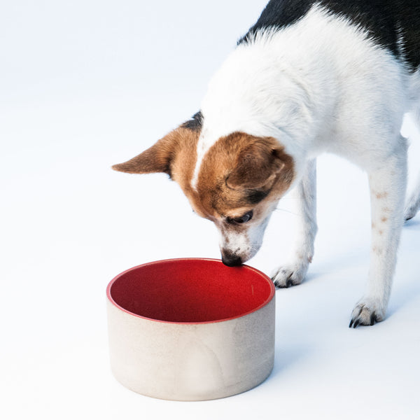 Utilità Pet Bowls - Small Sumac Red