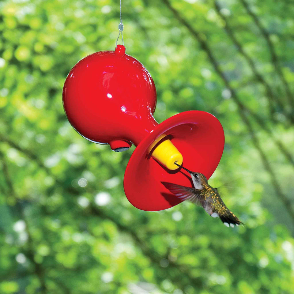 J Schatz Red Hot Hummingbird Feeder in Nature