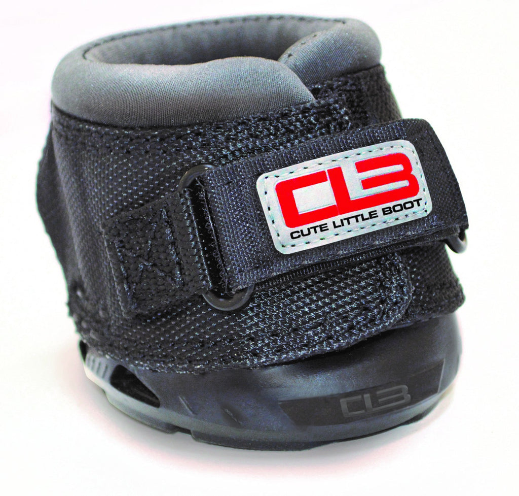 Cavallo Cute Little Boot for Miniature Shetlands.
