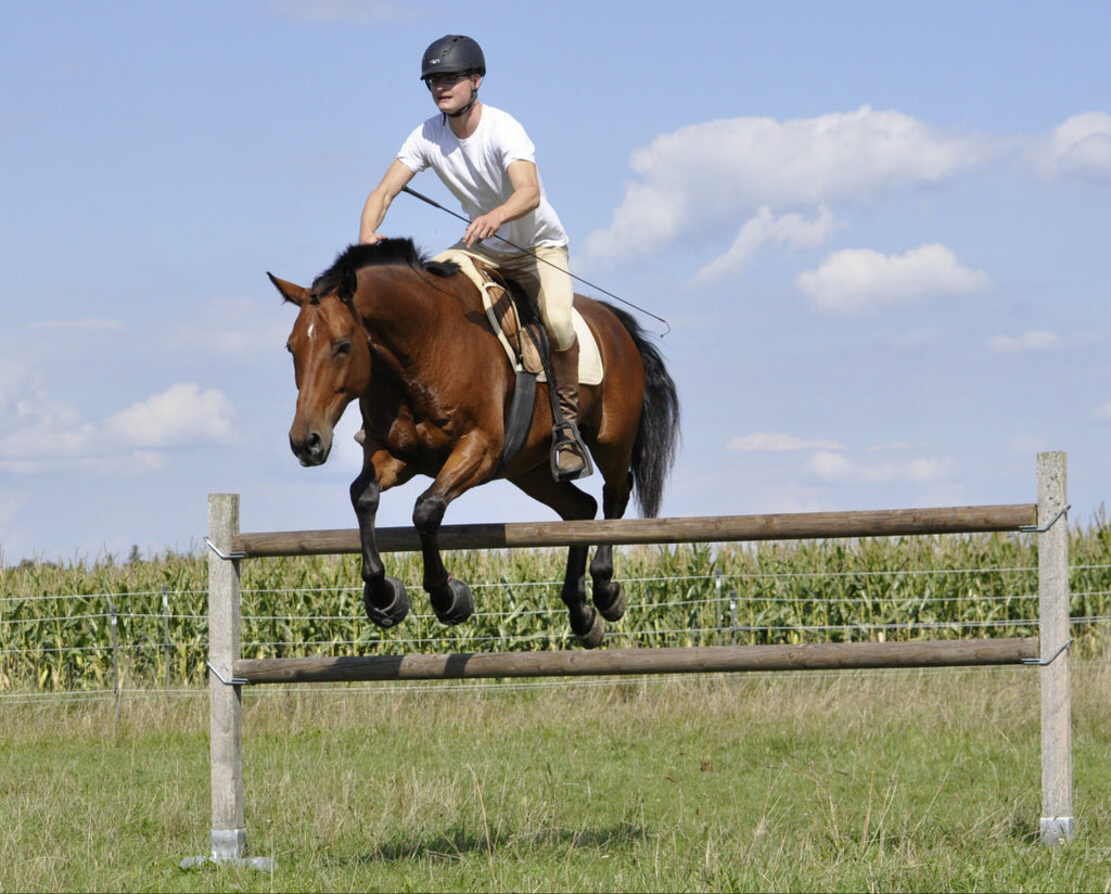 Pegasus and Carl Jumping In Cavallo Trek Hoof Boots