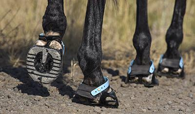 Excellent drainage and non-absorbant for easy to keep clean hoof boots.