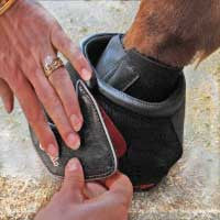 Cavallo pastern wraps for use with cavallo hoof boots.