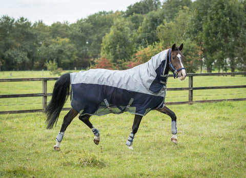 Euro-star SS17 Excellent Rain Fly Rug