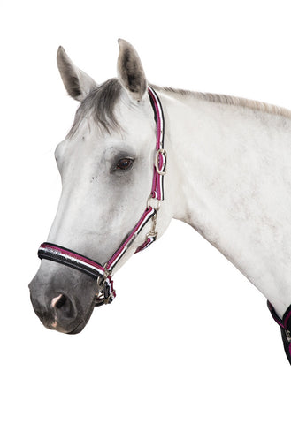 Eskadron NG 15 Double Pin Headcollar Berry / White / DarkBasalt