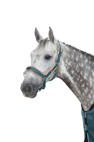 Eskadron Classic AW19 Double Pin Faux Fur Glossy Headcollar - Tealblue - Divine Equestrian