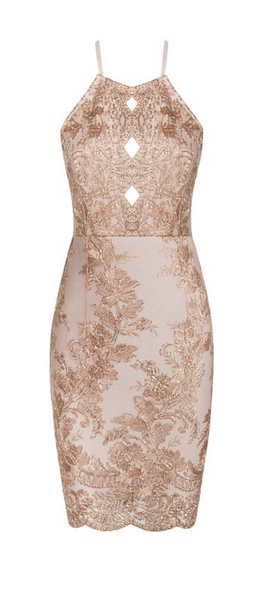 'Lacello' Beaded Embroidery Dress - Rose