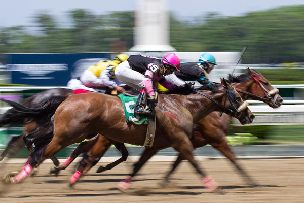 All Access Photography Class at Arlington Park Race Track  (4/29/2017) 6:00am-10am