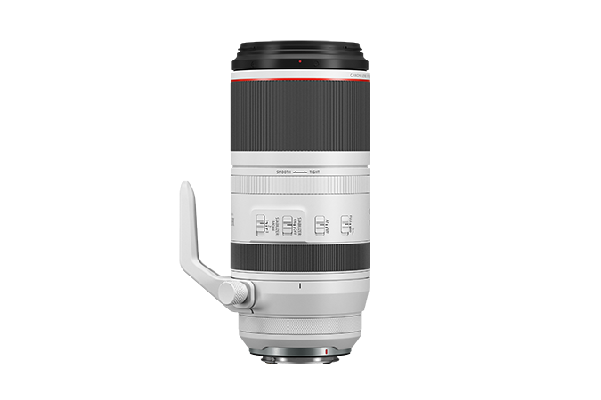 Canon RF100-500mm F4.5-7.1 L IS USM Lens