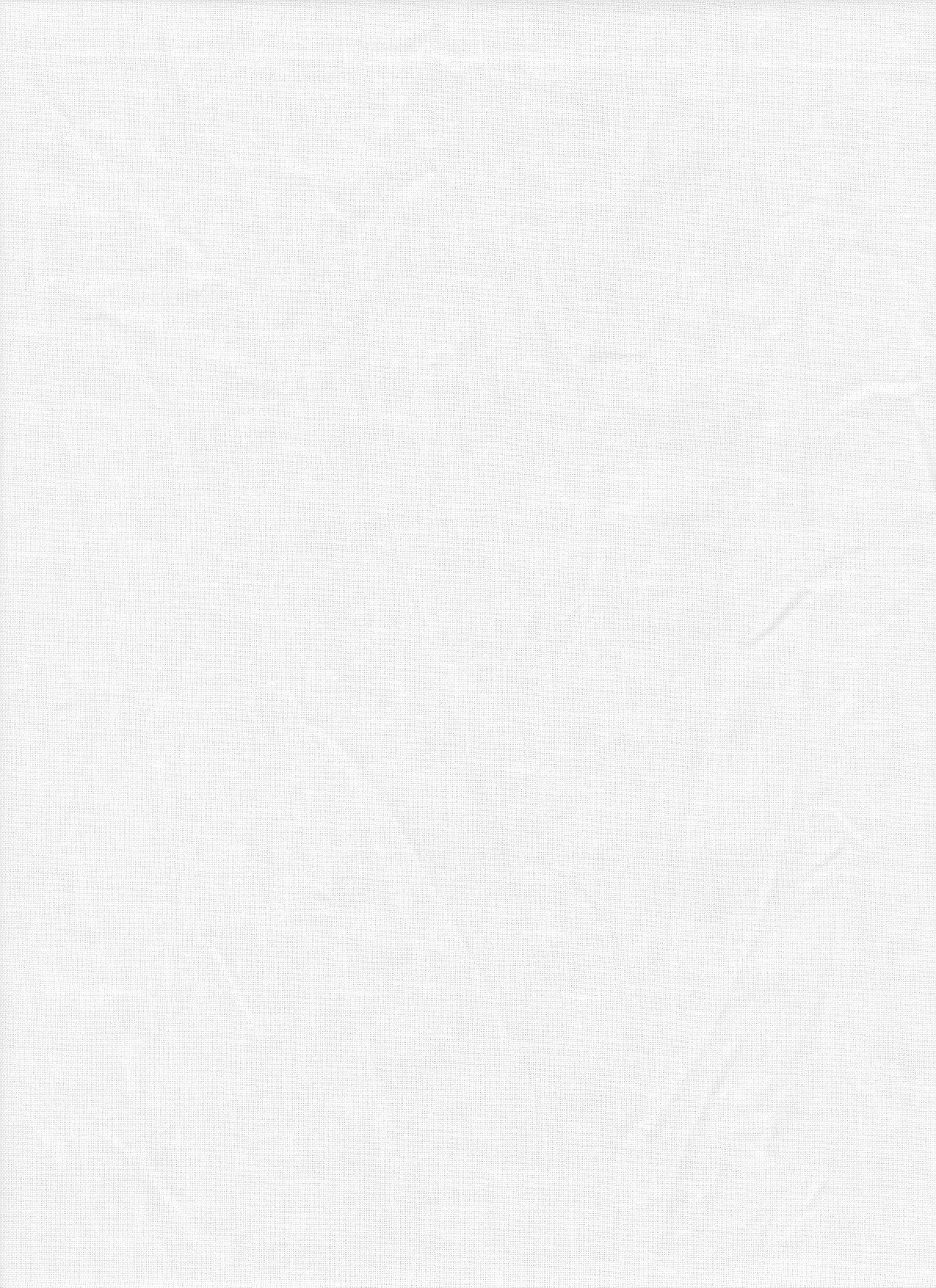 ProMaster Solid Backdrop - 10'x12' - White