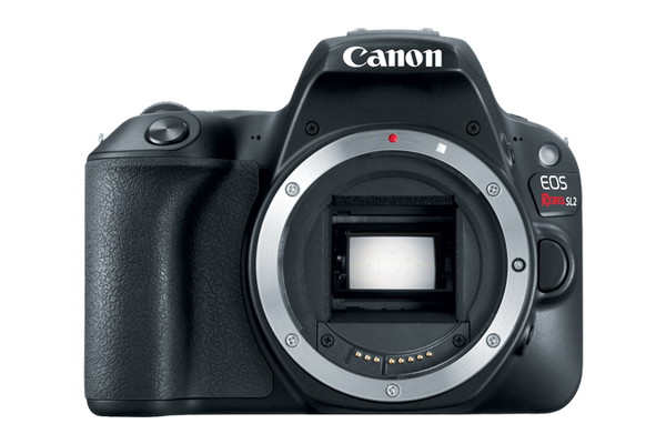 Canon EOS Rebel SL2 DSLR Body Only (Black) (PRE-ORDER) - Photo-Video - Canon - Helix Camera