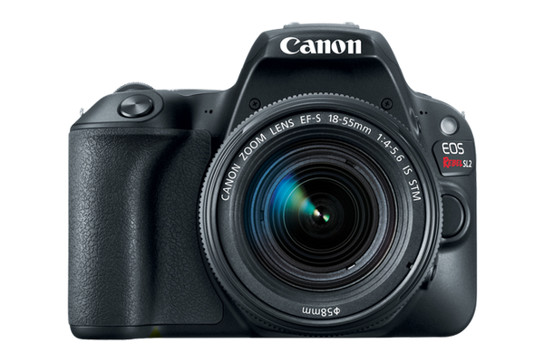 Canon EOS Rebel SL2 DSLR Body with 18-55mm (Black) (PRE-ORDER) - Photo-Video - Canon - Helix Camera