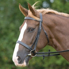Leather Bridle - Blenheim