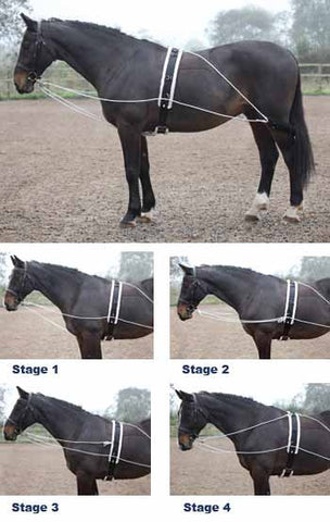 Lunging Aid (ROLLER NOT SUPPLIED)