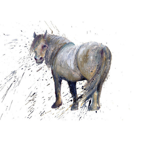 Horse (Pony) Greeting Card by Clare Brownlow