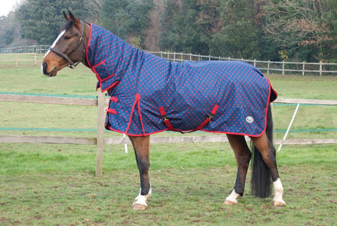 Nevada Turnout Rug 320g