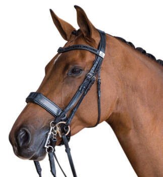 Fairfax Performance Bridle- Double Cavesson