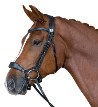 Fairfax Performance Bridle - Snaffle Drop